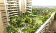 Lumbini Terrace Homes